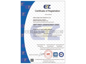 9001 certification - English